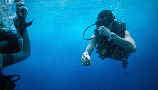 Best Dive Watch Under 300