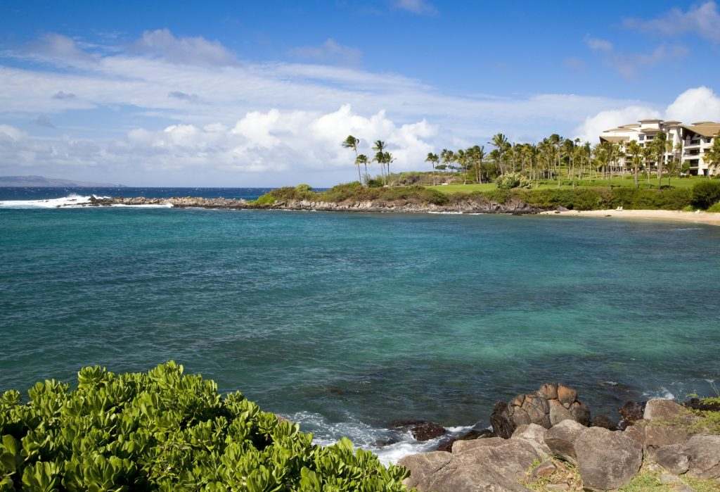 Kapalua Bay Maui Snorkeling