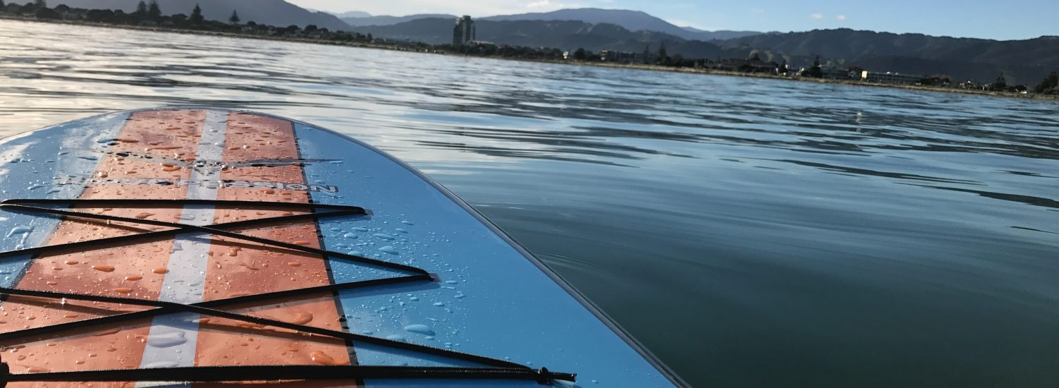 Can't Surf? Try SUP Instead.