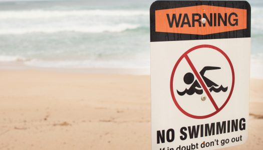 Swimmer's Guide to Rip Currents